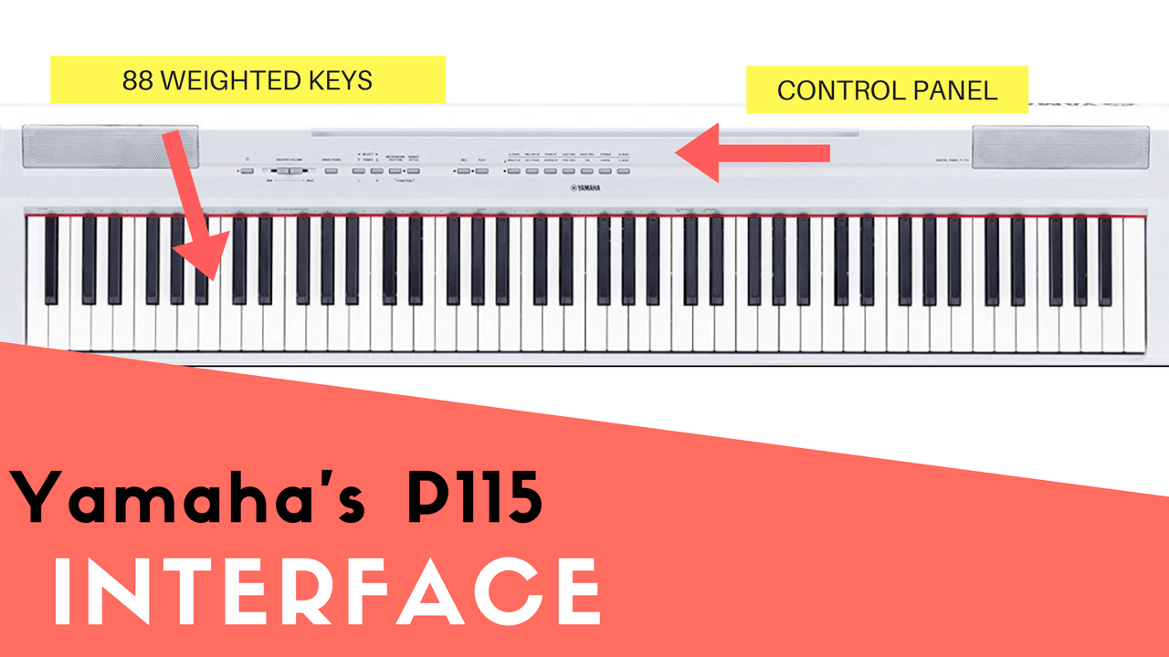 Yamaha P115 layout interface and 88 keys picture